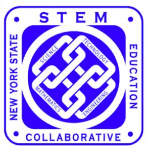 NY STEM 1
